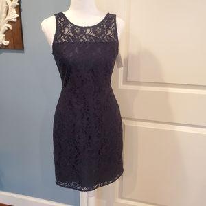 NWT Beautiful! J.Crew Navy Lace Dress size 00